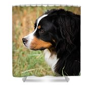 Farwell To Cousin And Friend Shower Curtain