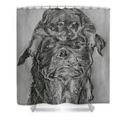 Father And Puppy  Shower Curtain