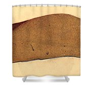 Fatty Liver, Pathology, Illustration Shower Curtain