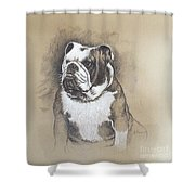 Fausto Shower Curtain