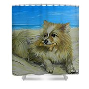 Favorite Toy Shower Curtain
