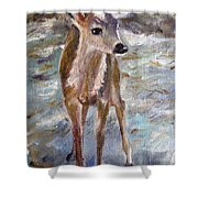 Fawn Shower Curtain