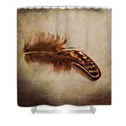 Feather 4 Shower Curtain