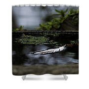 Floating On A Still Pond Shower Curtain