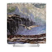 Feather And Foam Shower Curtain