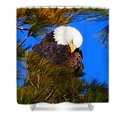 Feather Fluff Shower Curtain
