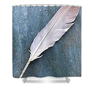 Feather Of A Dove Shower Curtain