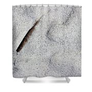 Feather, Shell And Sand Shower Curtain