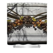 Feather Swag Shower Curtain