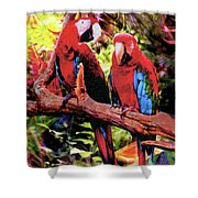 Feathered Duet Shower Curtain
