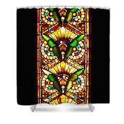 Feathered Folly Shower Curtain