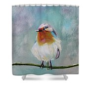 Feathered Friends First In Series Shower Curtain