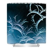 Feathered Frost Shower Curtain