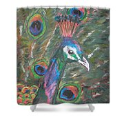 Feathered Splendor Shower Curtain