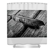 Feathering Shower Curtain