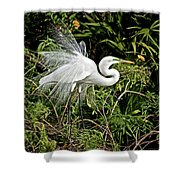 Beautiful Feathers And Foliage Shower Curtain