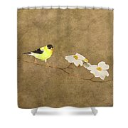 Feathers And Petals I Shower Curtain