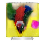 Feathers In Wine Glass Shower Curtain