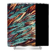 Feathers Of Crystal 2 Shower Curtain