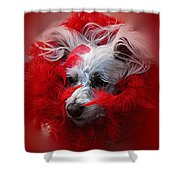 Feathers Of Red Shower Curtain