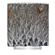 Feathers Of The Wild Hen Shower Curtain