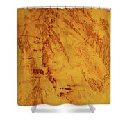 Feathers On The Wind Shower Curtain