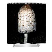 Feathery Mushroom Shower Curtain