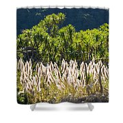 Feathery White Plants Shower Curtain