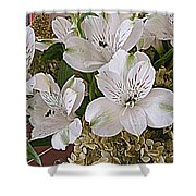 February Flowers Shower Curtain