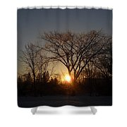 February Sunrise Behind Elm Tree Shower Curtain