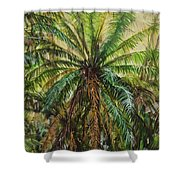 Federico Palm Shower Curtain