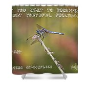 Feel Young Again Shower Curtain by Carol Groenen