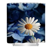 Feeling Blue Daisies Shower Curtain
