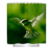 Feeling Free As A Bird Wall Art Print Shower Curtain