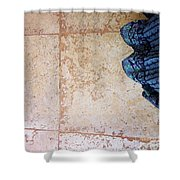 Feet Around The World #10 Shower Curtain
