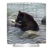 Feasting Bear Shower Curtain