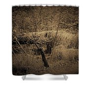 Back To Earth Shower Curtain