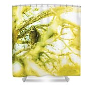 Fellowship Of The Raven Shower Curtain