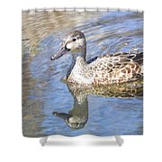 Female Blue Wing Shower Curtain