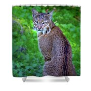 Female Bobcat Shower Curtain