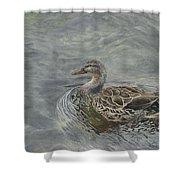 Female Duck Shower Curtain