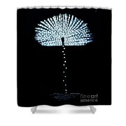 Female Feather Shower Curtain