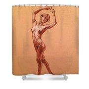 Female Nudity  Shower Curtain