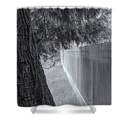 Fence In Black And White Shower Curtain by Tom Singleton