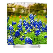 Fence Me In With Flowers Squared  Shower Curtain