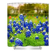 Fence Me In With Flowers Shower Curtain