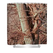 Fence Post Buddy Shower Curtain