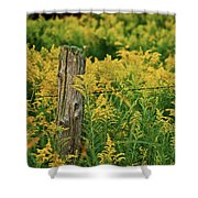 Fence Post7139 Shower Curtain