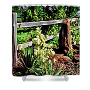 Fence-yucca-rock Shower Curtain
