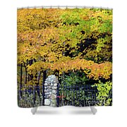 Fenced In Color Shower Curtain